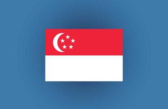 Product Safety Singapore Flag