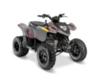 Recalled Model Year 2017-2021 Phoenix 200 ATV