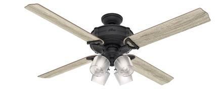 "Hunter fan 54179 Brunswick 60"" with 4 lights in black (natural iron) housing"