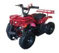 Recalled Luyuan Youth ATV (LY-ATV-40D)