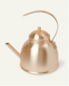 Recalled Brushed Gold Kettle